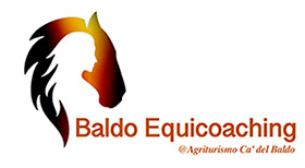 logo_Baldo Coaching